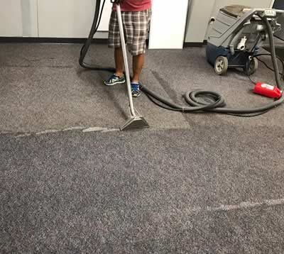 Affordable Carpet Cleaning Service Bay Area Magic Touch All